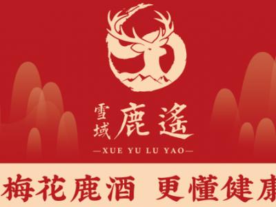 吉林省雪域鹿遥科技有限公司